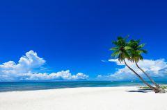 Leinwand Karibik 78x118cm