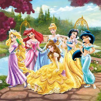 Leinwandbild Disney Prinzessinnen - Garten